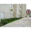 Pedreira - Apartamento - 50m - 250.000 - Venda